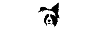 BlindTails Logo